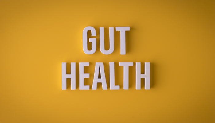 Gut health on yellow background | DNAfit Blog