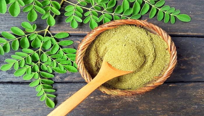 Moringa powder from india   DNAfit Blog