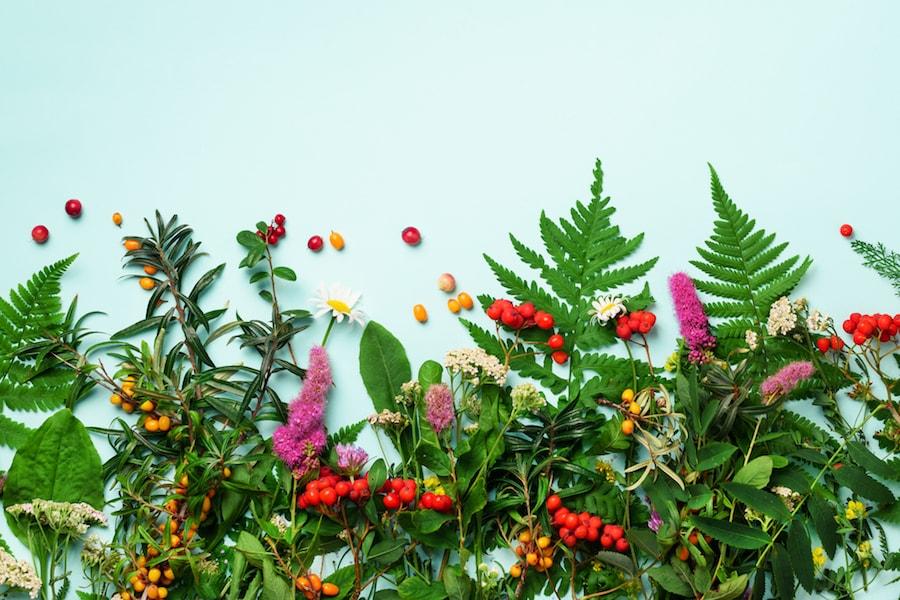 Alternative medicine blue backdrop | DNAfit Blog