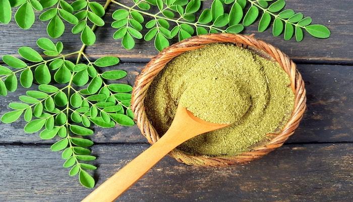 Moringa powder | DNAfit Blog