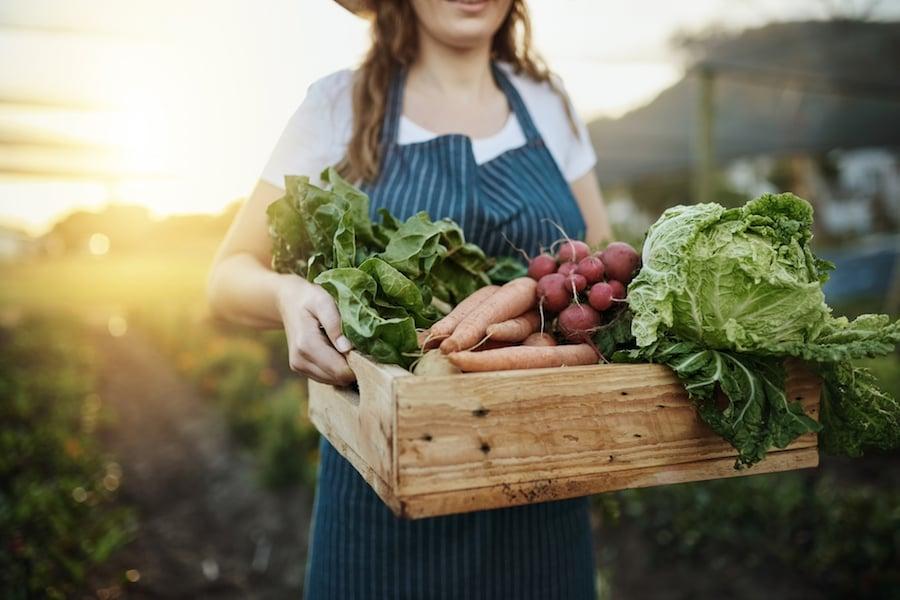 Woman in her garden, fresh veg   DNAfit Blog
