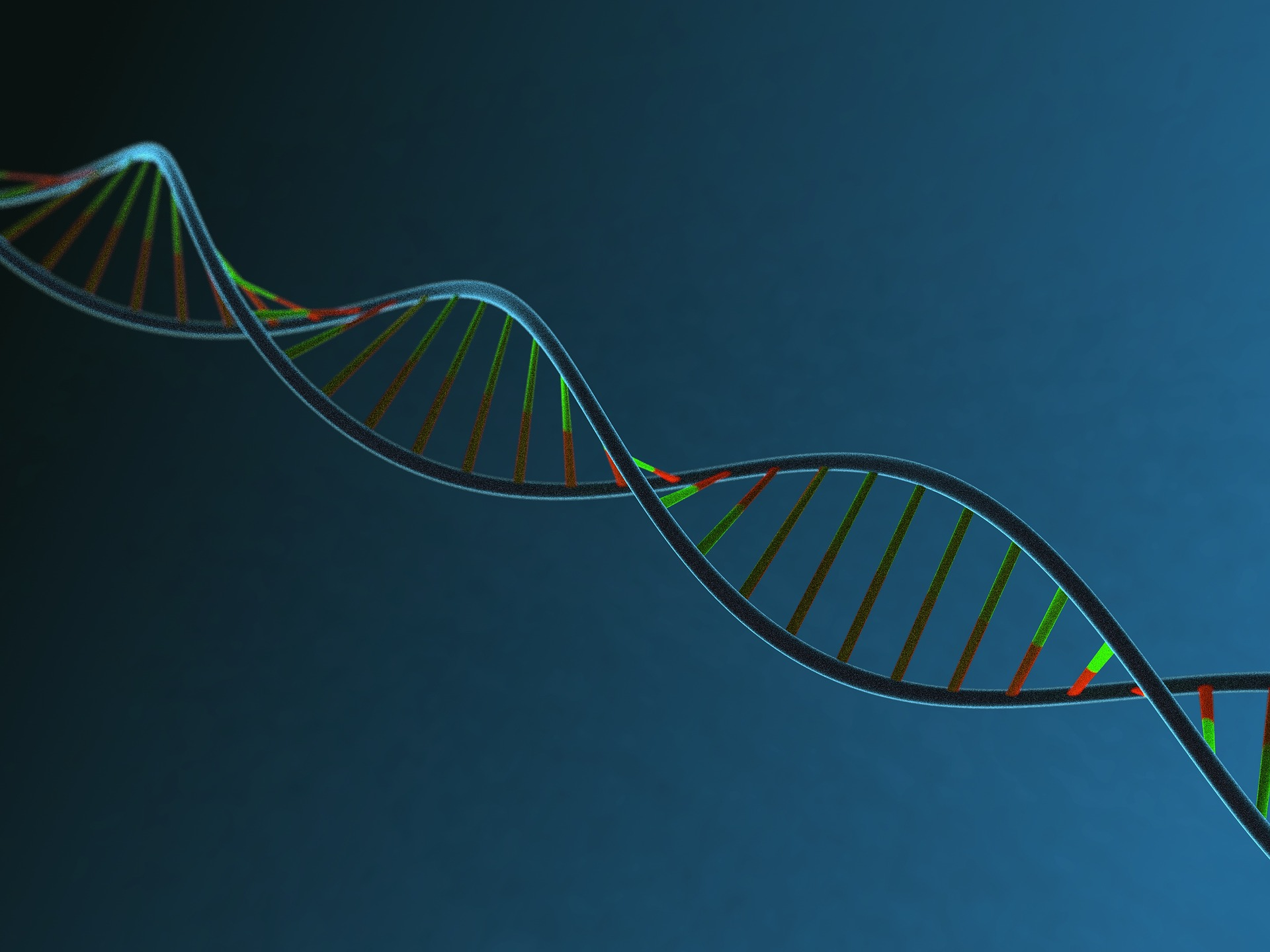 Is your weight loss genetic